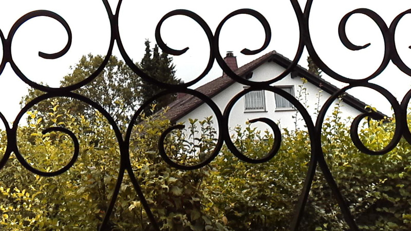 Fig. 18. Image from camera without ocular and tube. Hand-held snapshot taken out of a window demonstrating camera's depth of field. Metal latticework is approximately 1 meter away, whereas the house is approximately 50 meter away.